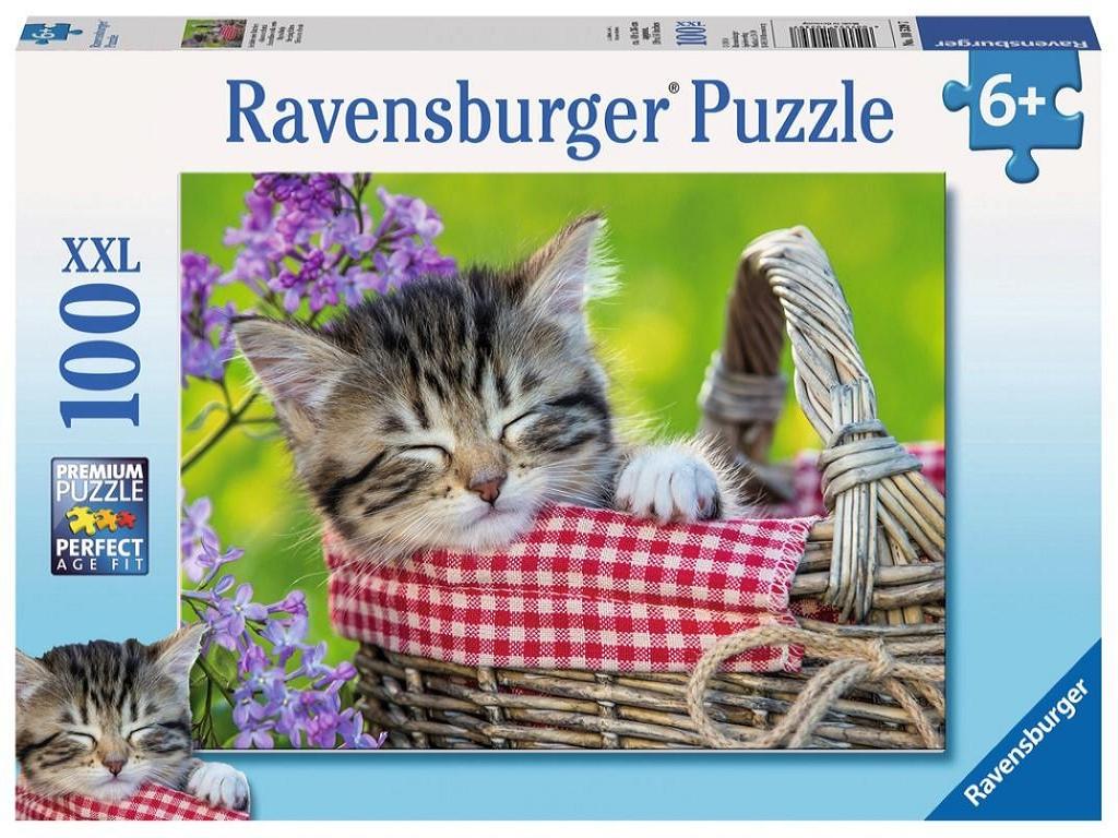 ravensburger muca spi v košari 105397