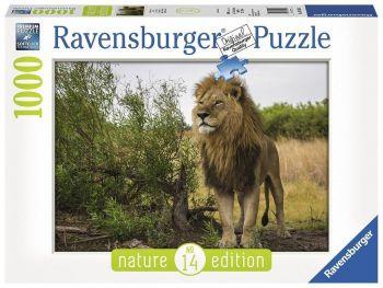 Sestavljanka Lev v savani Ravensburger 1000 delna