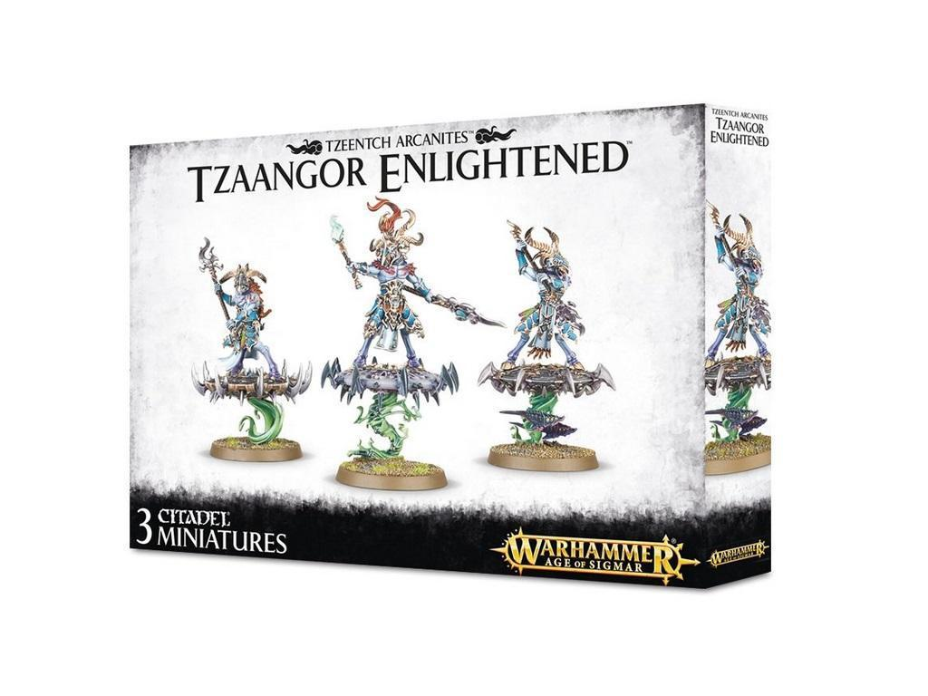 Warhammer - Age of Sigmar - Tzaangor Enlightened