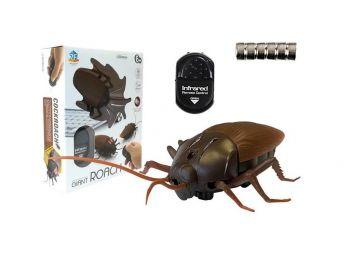 Daljinsko voden ščurek