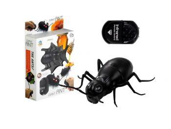 Daljinsko vodena mravlja velikanka