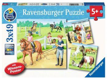 Ravensburger sestavljanka Konji - jahalna šola