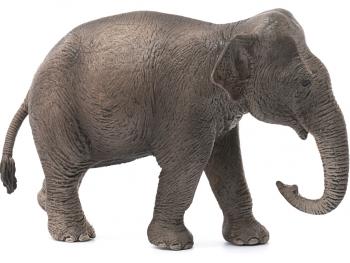 Schleich figura Slon azijski - samica