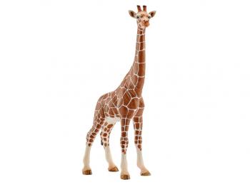 Schleich figura Žirafa - samica